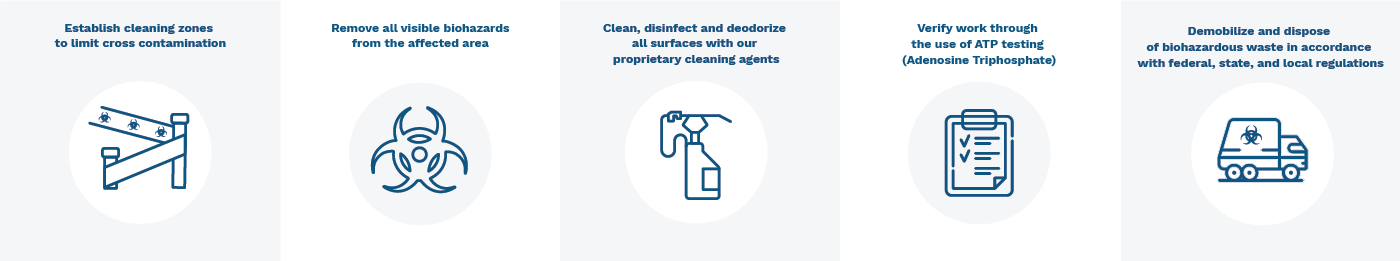 Infographic of cleanup procedure